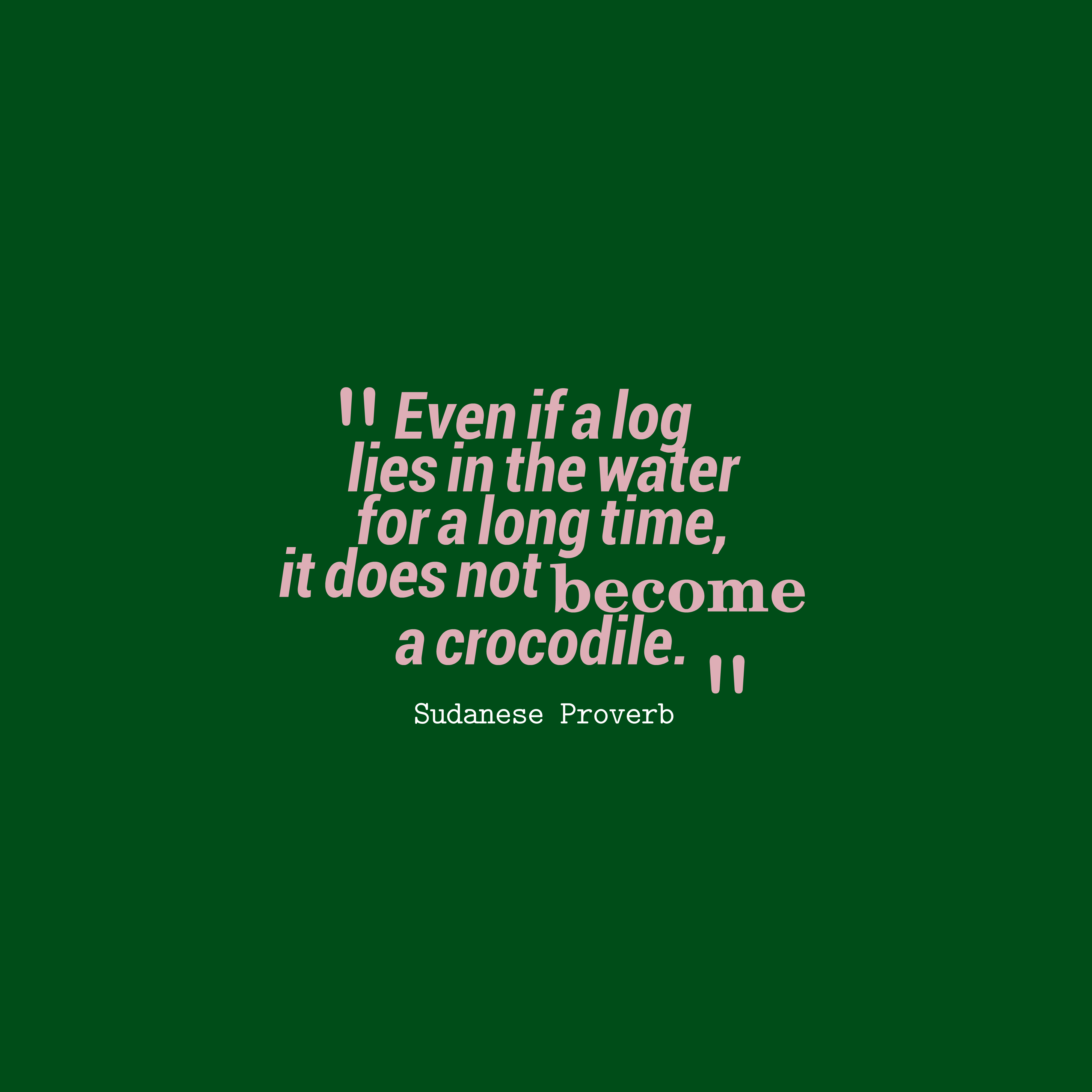 Quotes image of Even if a log lies in the water for a long time, it does not become a crocodile.