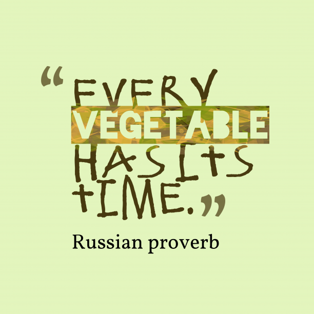 Russian proverb about plans.