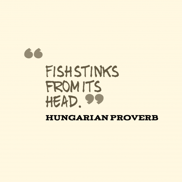 Hungarian Wisdom 's quote about . Fish stinks from its head….