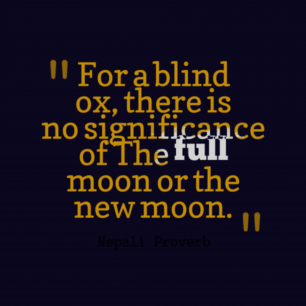 Nepali Wisdom 's quote about . For a blind ox, there…