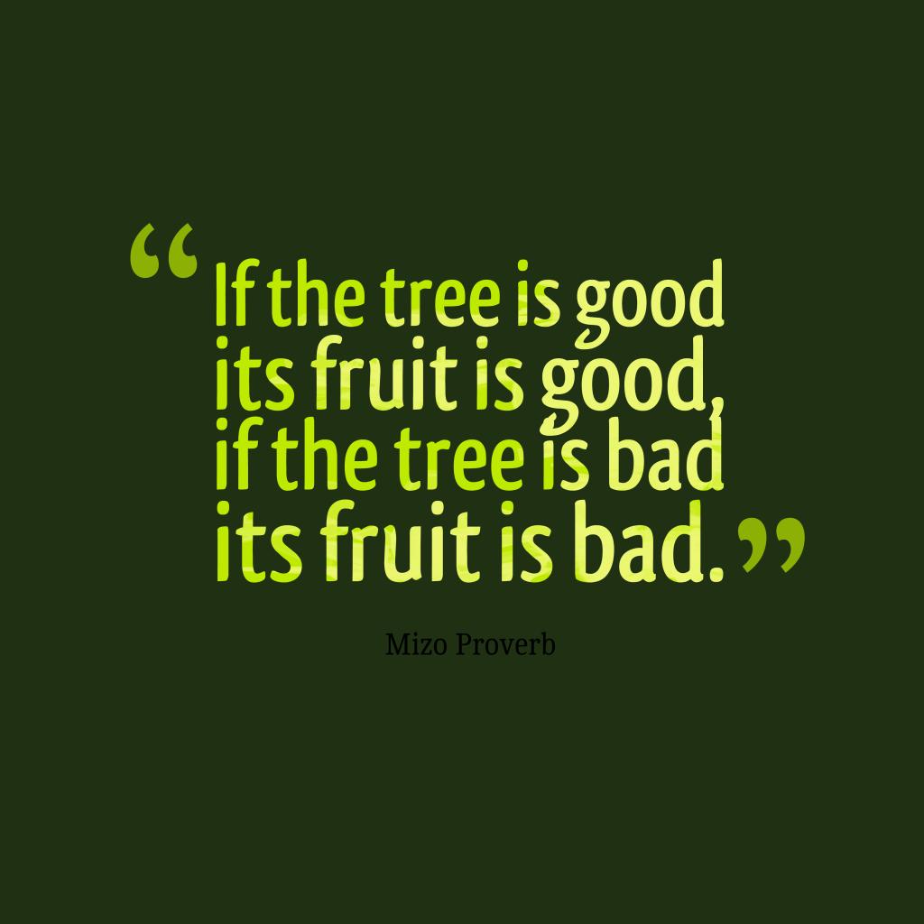 Mizo proverb about attitude.