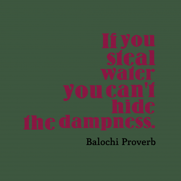 Balochi Wisdom 's quote about . If you steal water you…