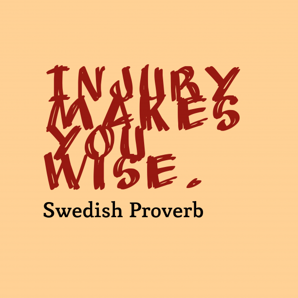 Swedish proverb about learn.