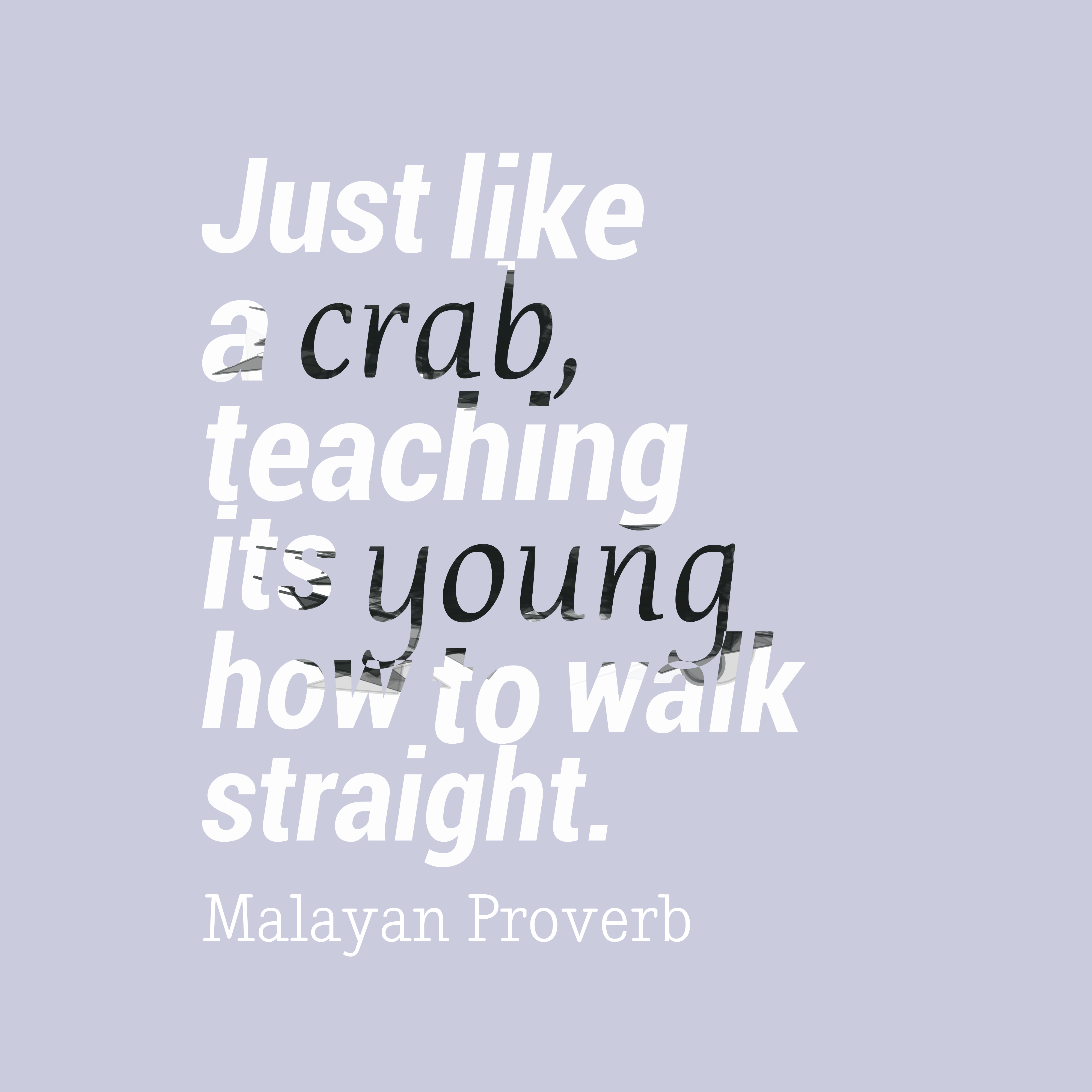 Quotes image of Just like a crab, teaching its young how to walk straight.