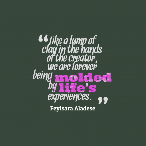 Feyisara Aladese quote about learn.
