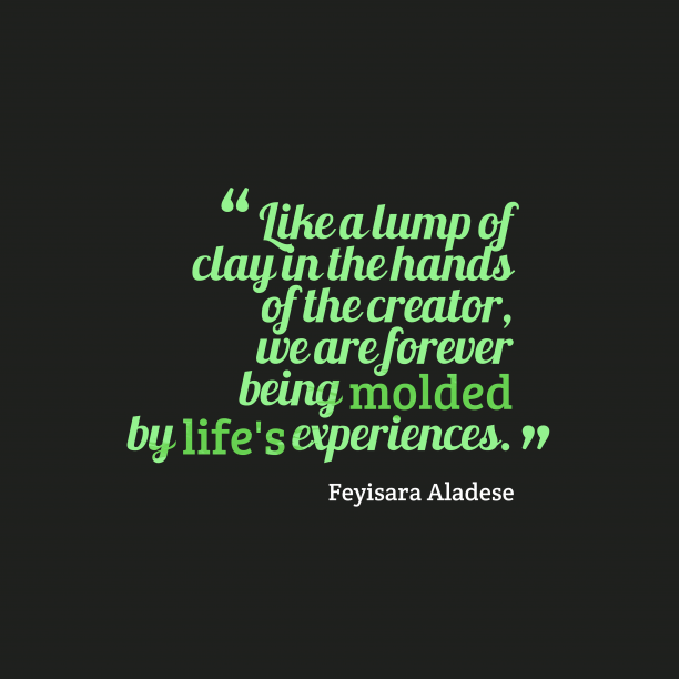 Feyisara Aladese quote about learning.