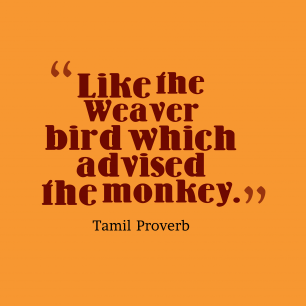 Tamil Wisdom 's quote about Advice. Like the Weaver bird which…