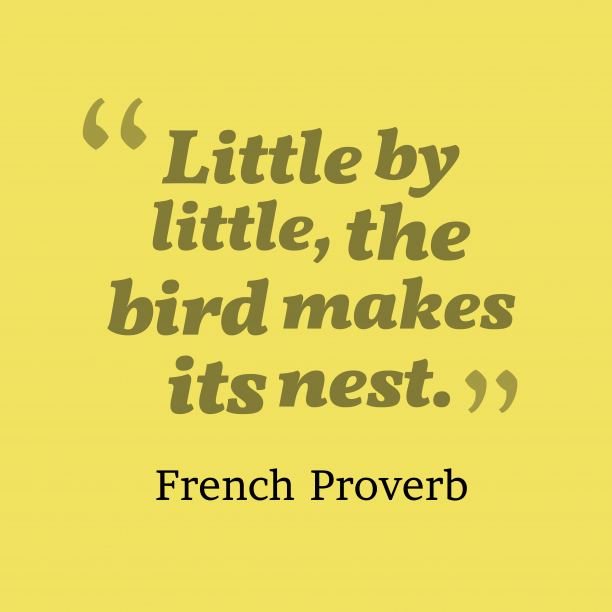 French Wisdom 's quote about . Little by little, the bird…
