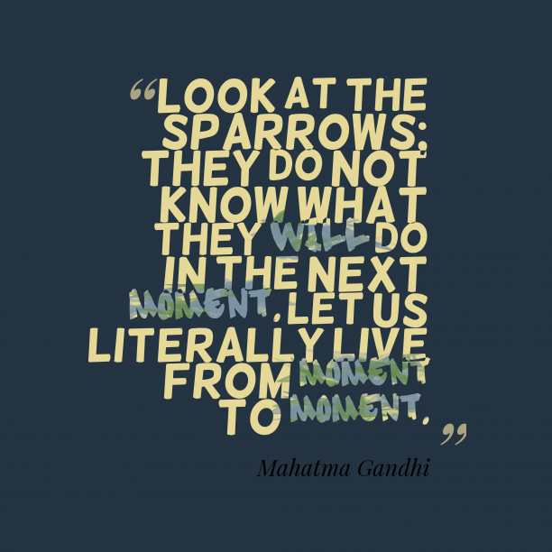 Mahatma Gandhi 's quote about Live. Look at the sparrows; they…