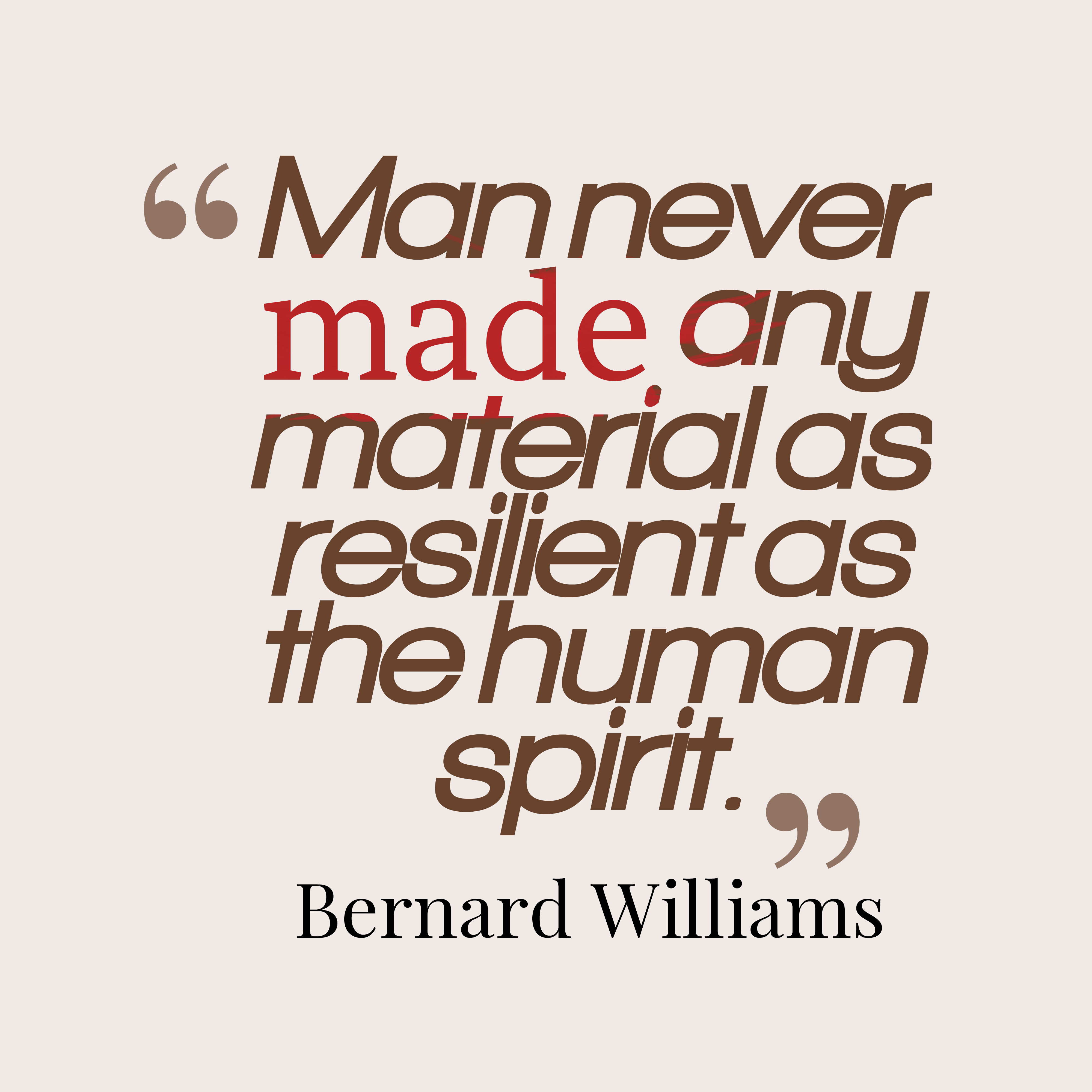 Bernard Williams Quote About Spirit