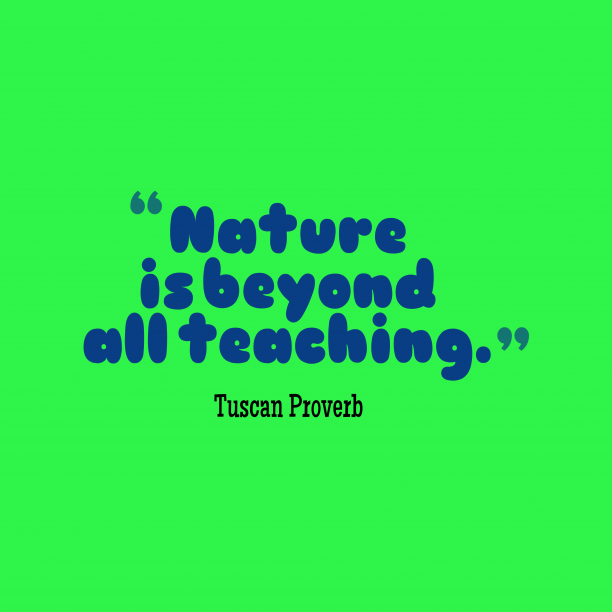 Tuscan Wisdom 's quote about Nature, teaching. Nature is beyond all teaching….