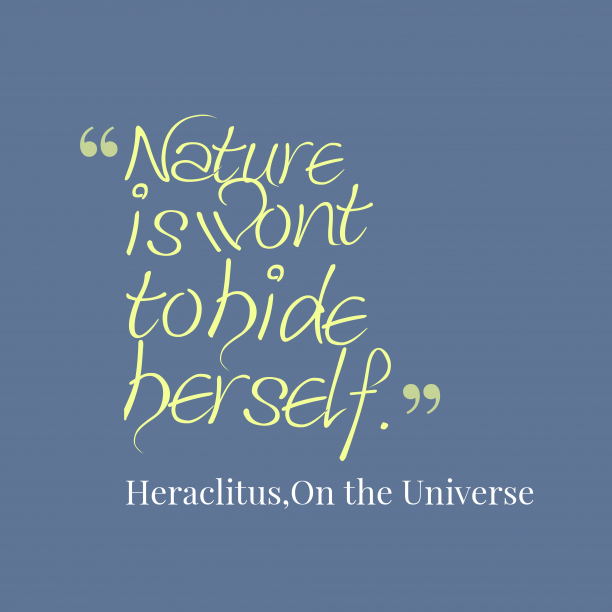 On the Universe 's quote about . Nature is wont to hide…