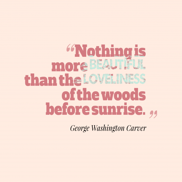 George Washington Carver 's quote about . Nothing is more beautiful than…