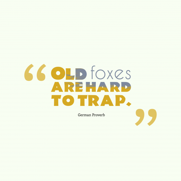 German Wisdom 's quote about experience, fox. Old foxes are hard to…