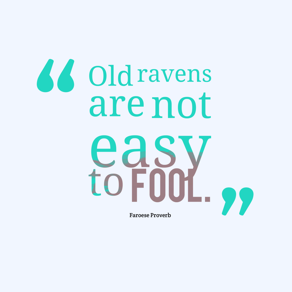 Faroese proverb about experience.