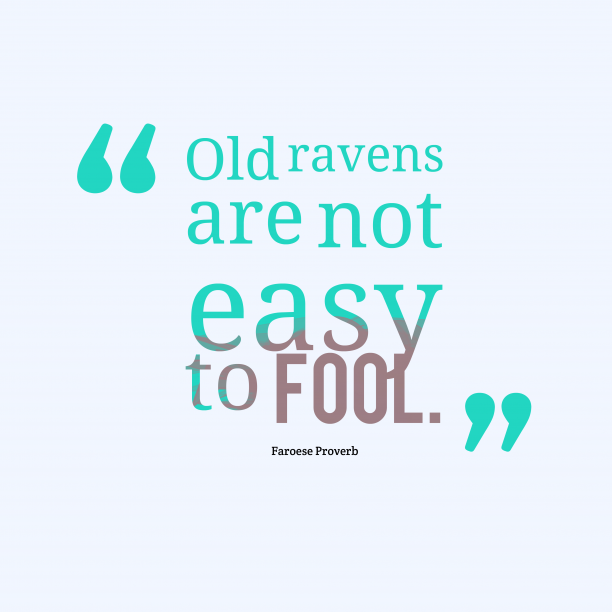 Faroese Wisdom 's quote about . Old ravens are not easy…