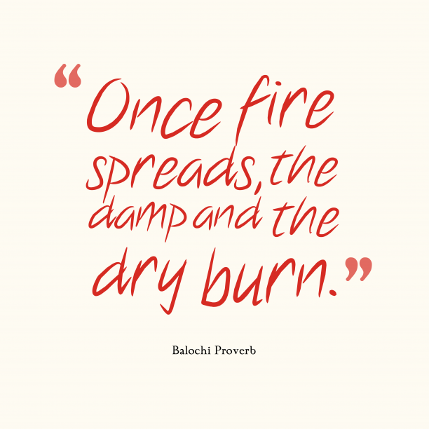 Balochi Wisdom 's quote about . Once fire spreads, the damp…