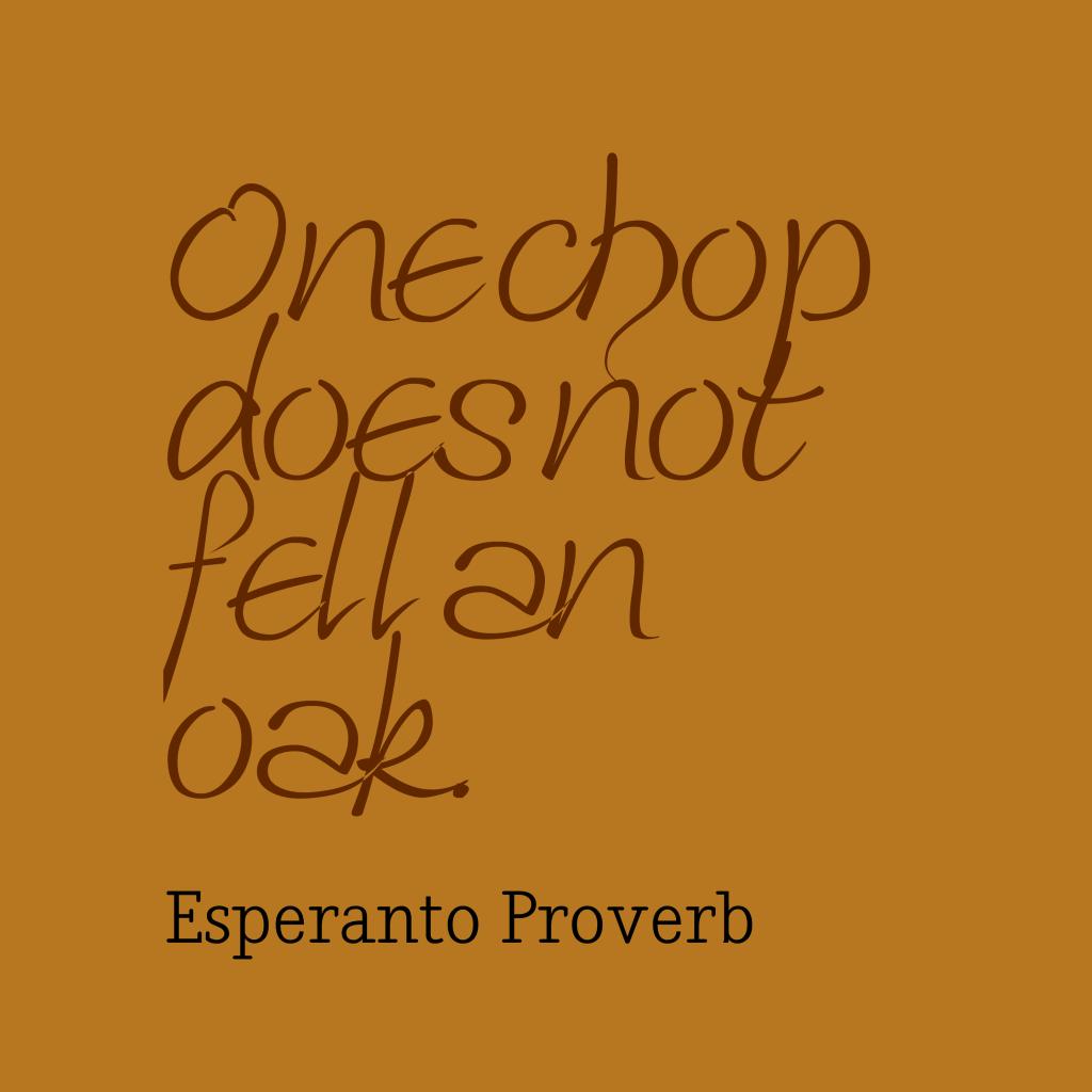 Esperanto proverb about task.