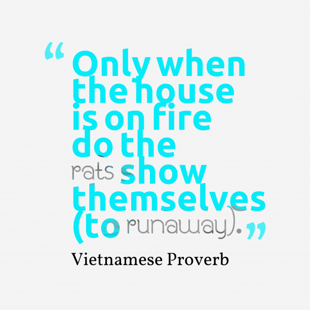 Vietnamese Wisdom 's quote about House. Only when the house is…