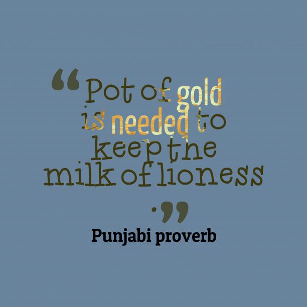 Punjabi proverb about care.