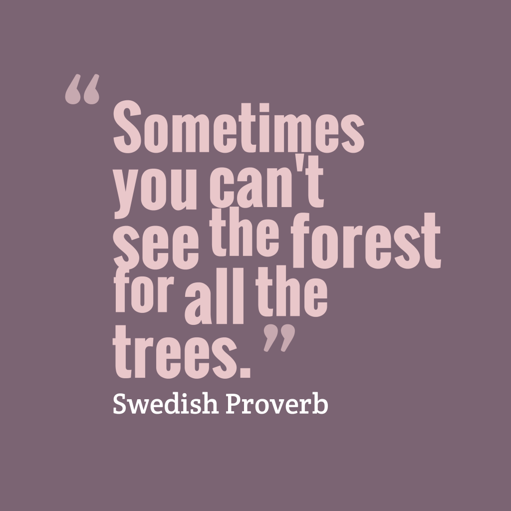 Swedish proverb about focus.