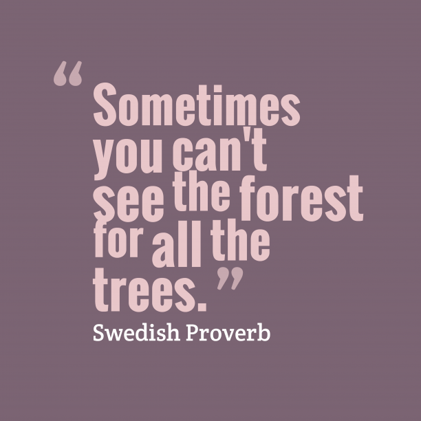 Swedish Wisdom 's quote about . Sometimes you can't see the…