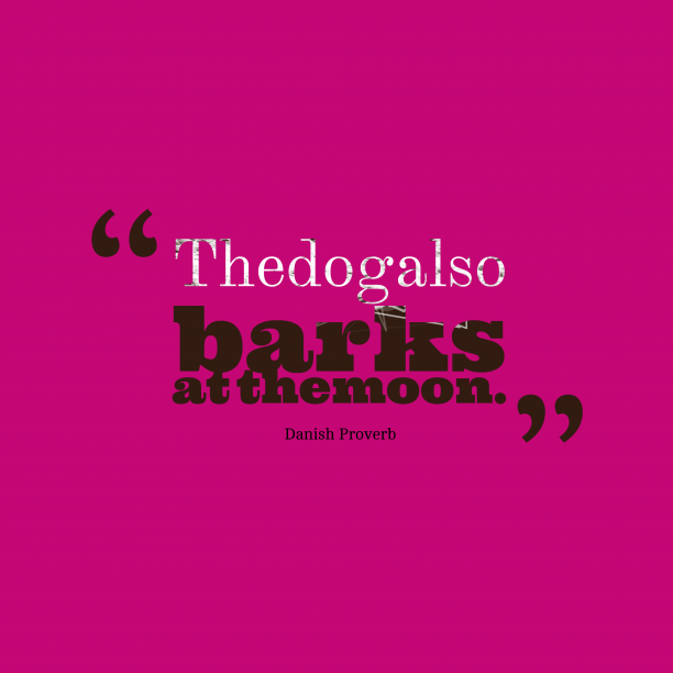 Danish Wisdom 's quote about . The dog also barks at…