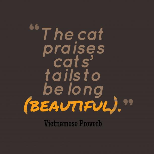 Vietnamese Wisdom 's quote about . The cat praises cats' tails…