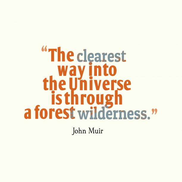 John Muir 's quote about . The clearest way into the…