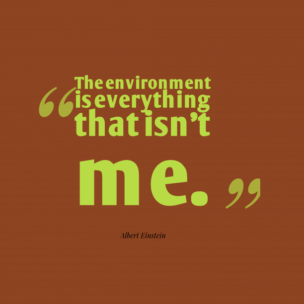 Albert Einstein 's quote about environment . The environment is everything that…