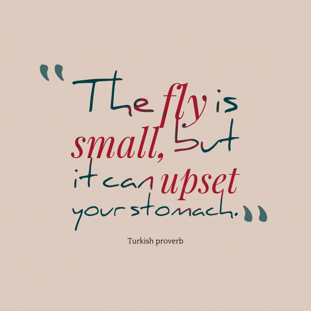 Turkish proverb 's quote about . The fly is small, but…