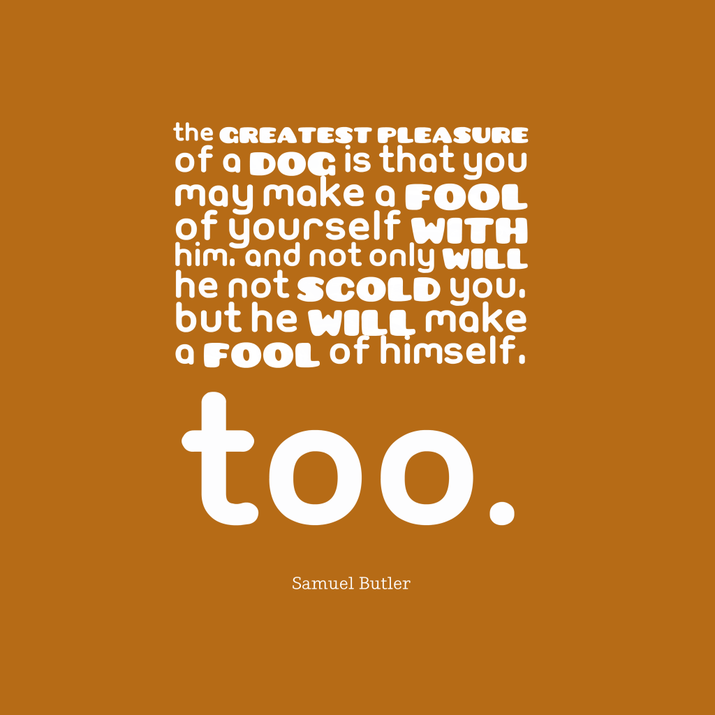 Samuel Butler quote about fool.