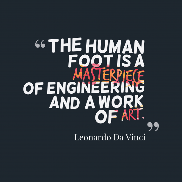 Leonardo Da Vinci 's quote about foot. The human foot is a…