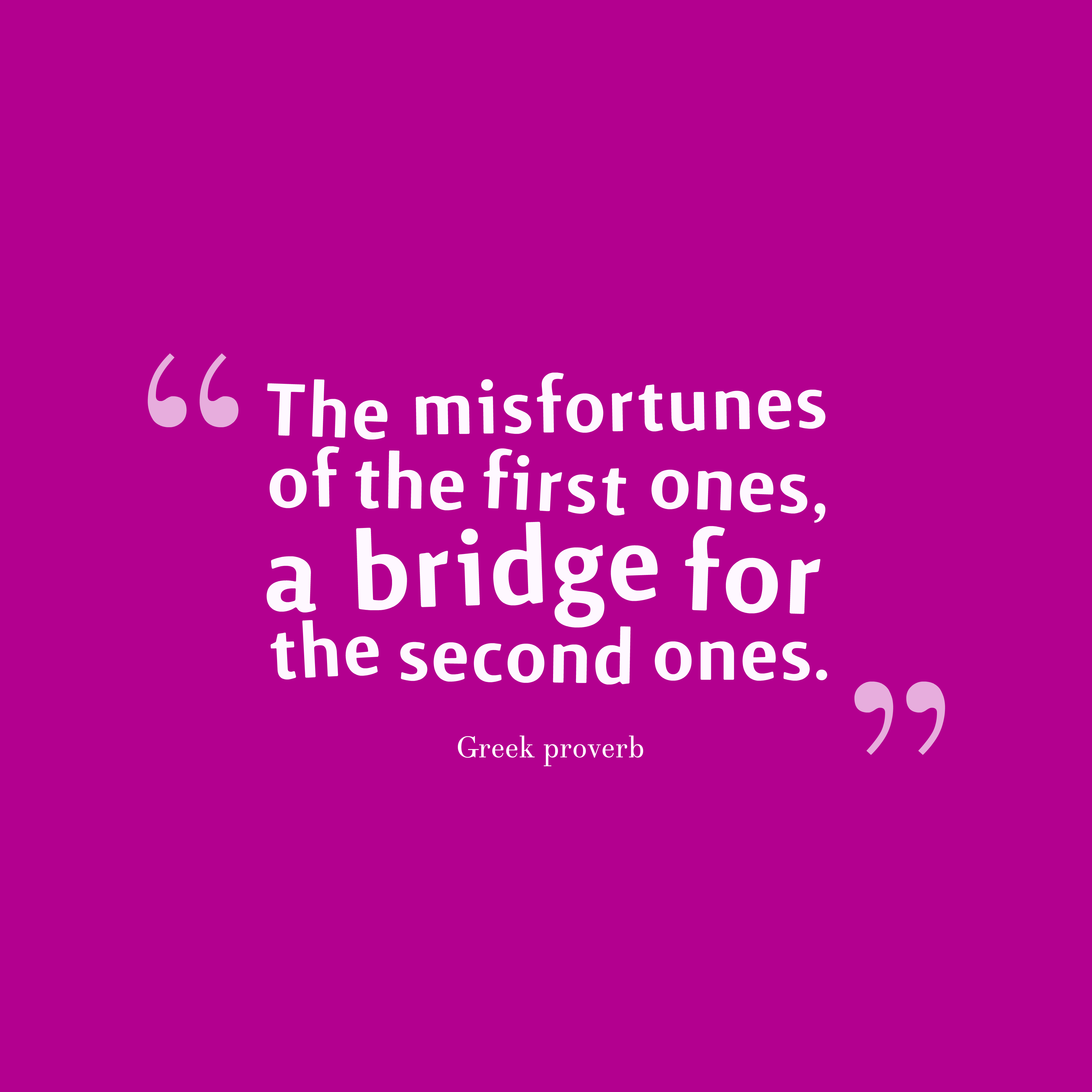 Quotes image of The misfortunes of the first ones, a bridge for the second ones.