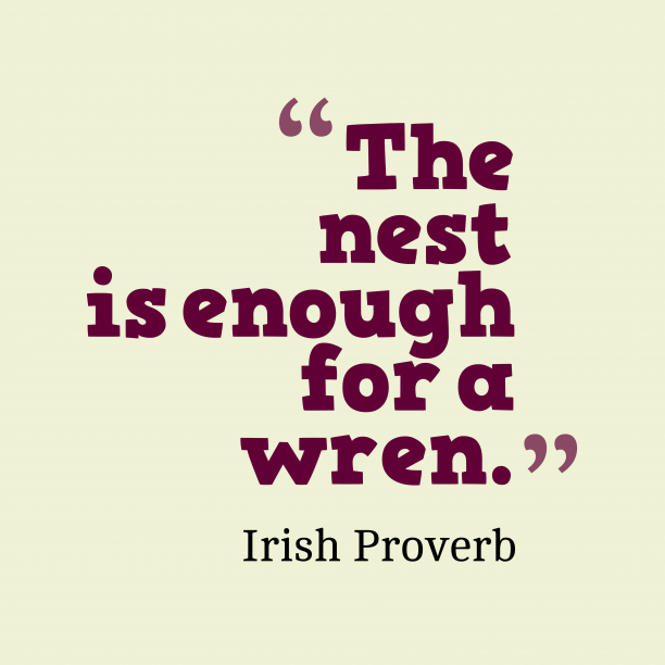 Irish Wisdom 's quote about Nest. The nest is enough for…