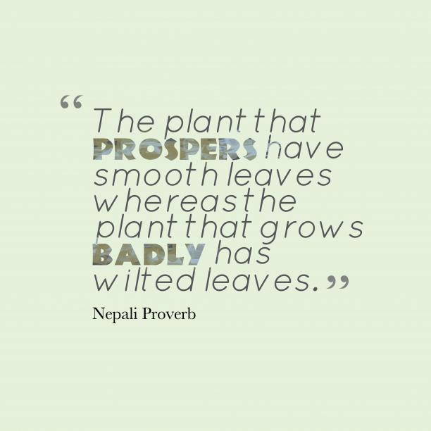 Nepali wisdom about talent.