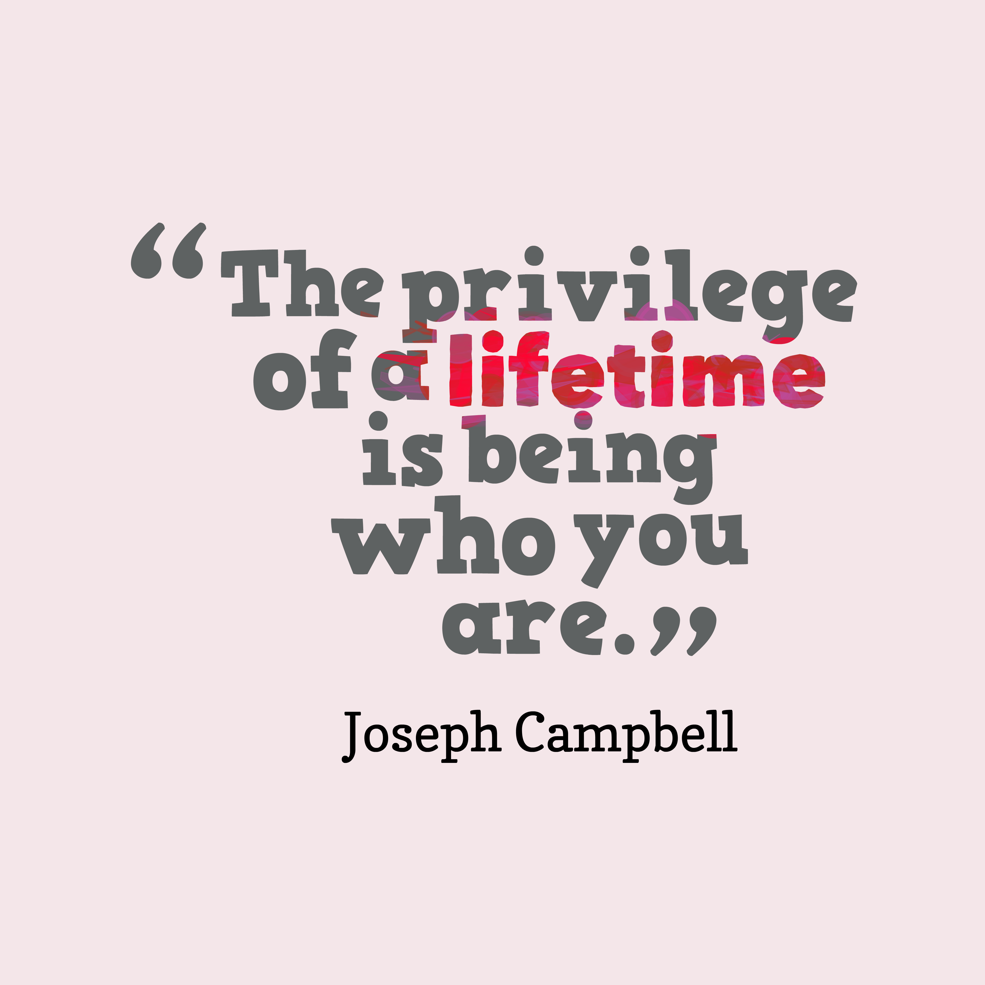 Quotes image of The privilege of a lifetime is being who you are.