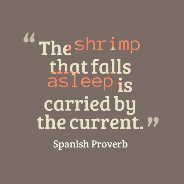 Spanish Wisdom 's quote about . The shrimp that falls asleep…