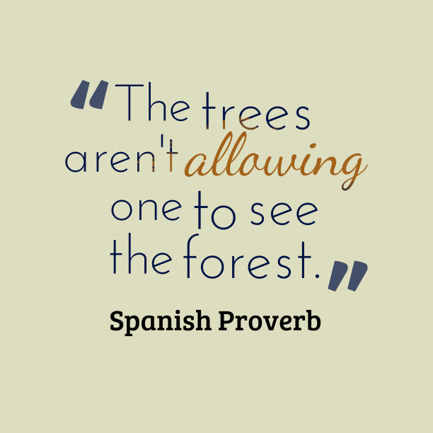 Spanish Wisdom 's quote about Forest. The trees aren't allowing one…