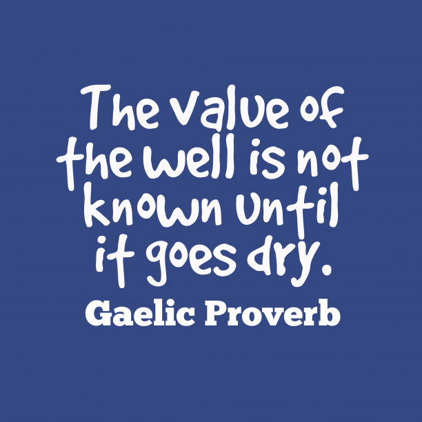 Gaelic Wisdom 's quote about . The value of the well…