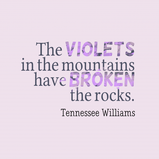 Tennessee Williams 's quote about . The violets in the mountains…