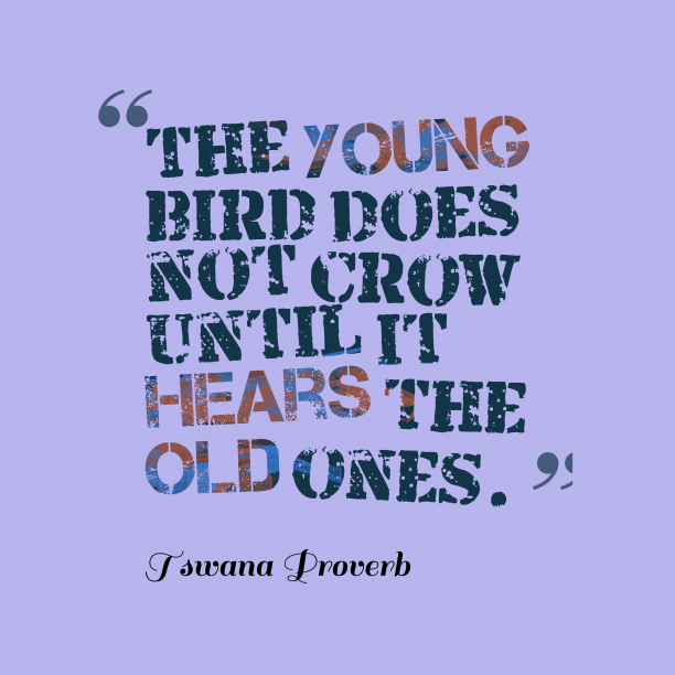 Tswana Wisdom 's quote about . The young bird does not…