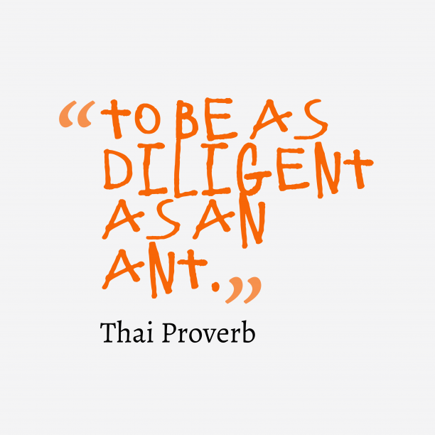 Thai Wisdom 's quote about Diligent. To be as diligent as…