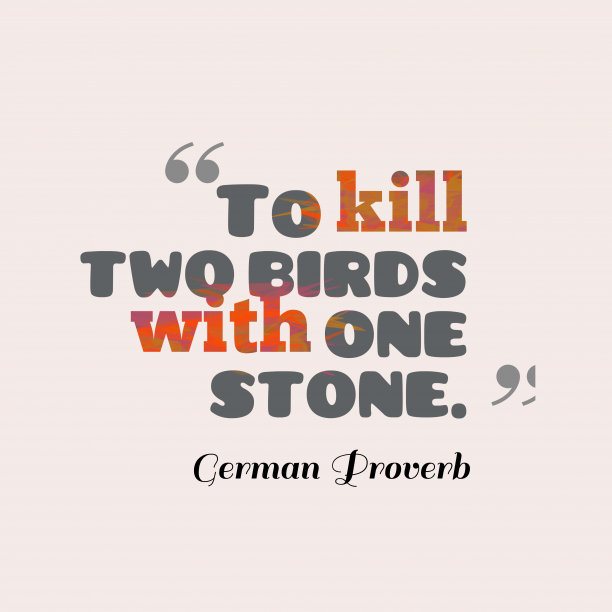 German Wisdom 's quote about . To kill two birds with…