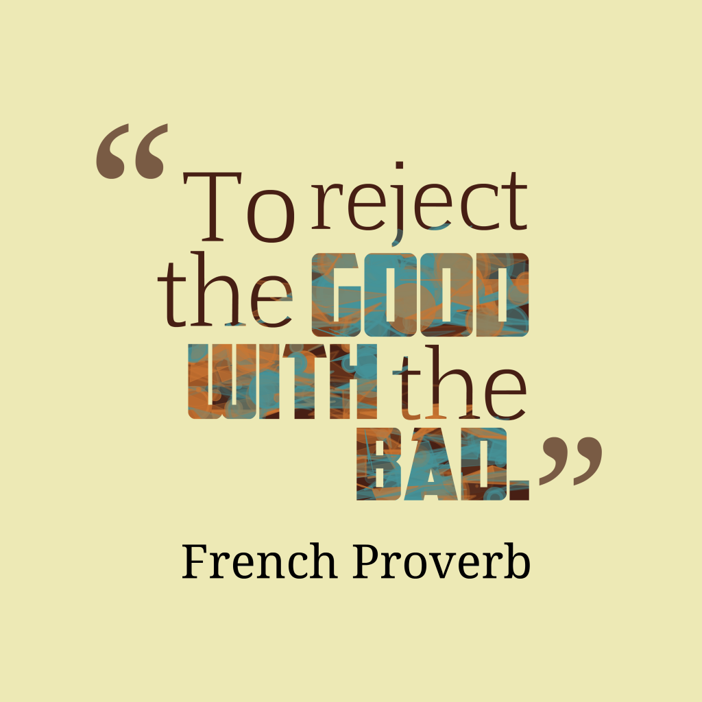 French proverb about idea.