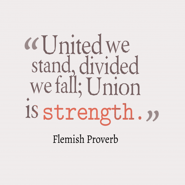 Flemish Wisdom 's quote about Union, strength. United we stand, divided we…
