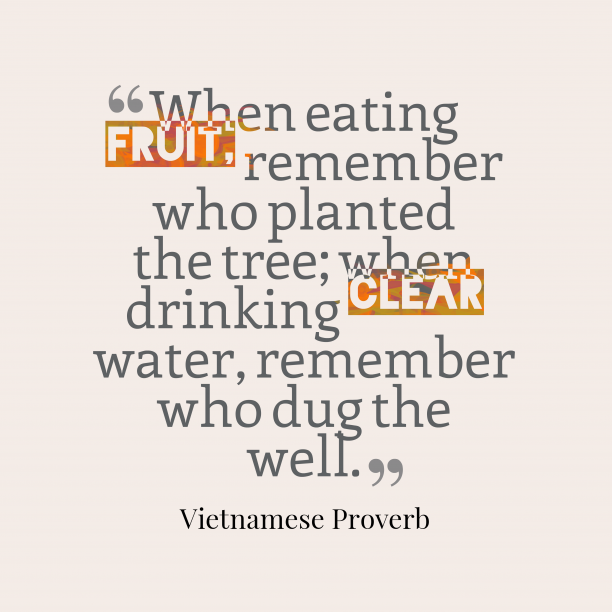 Vietnamese Wisdom 's quote about Advice. When eating fruit, remember who…