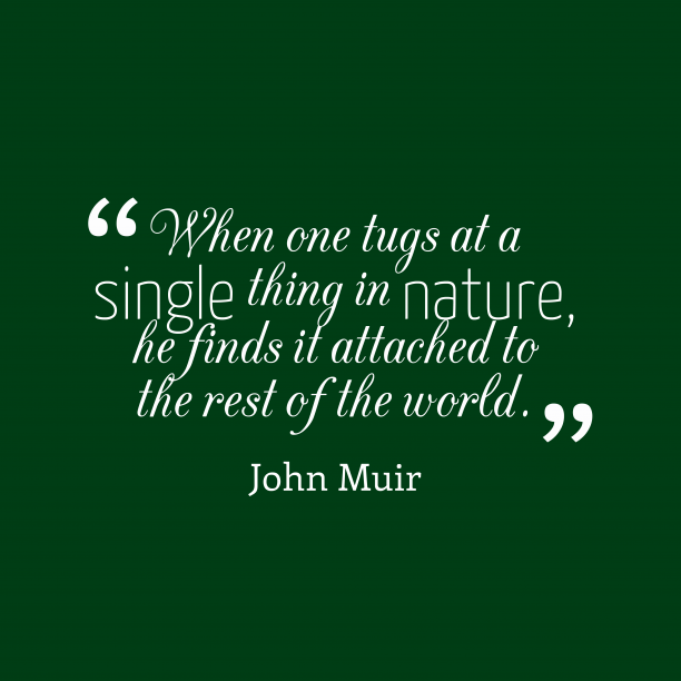John Muir 's quote about nature. When one tugs at a…