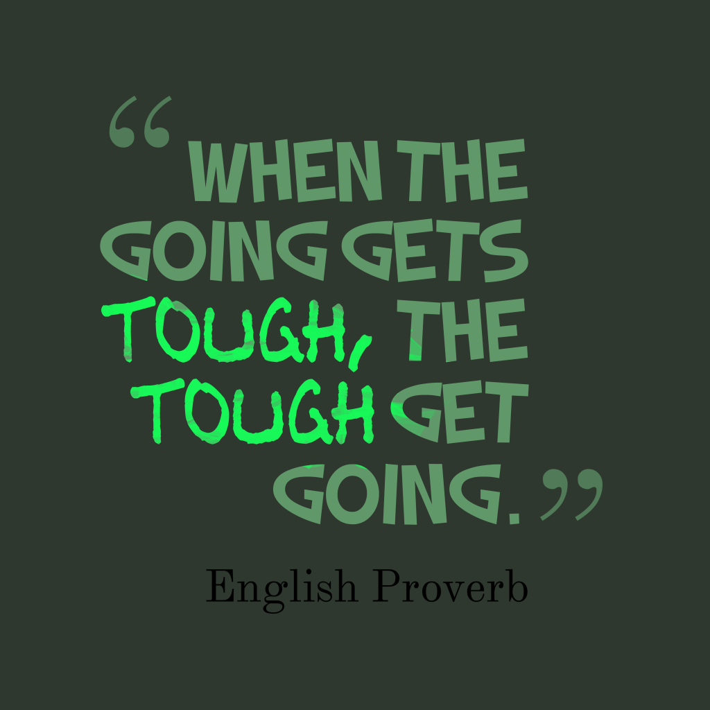 English proverb about challenges.