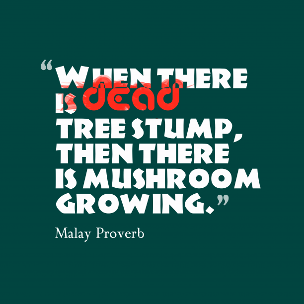 Malay Wisdom 's quote about . When there is dead tree…